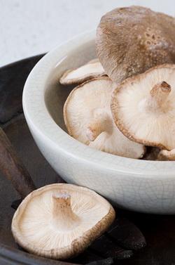 Как замораживать грибы